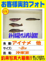 okyakusama-20140414-ooshima-01.jpg