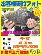 photo-okyakusama-2014-0406-kikugawa-chinu.jpg