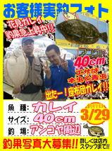 photo-okyakusama-20140329-koyaura-karei.jpg