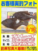 photo-okyakusama-20140417Koyaura-karei01.jpg