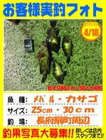 photo-okyakusama-20140418-kikugawa-mebaru.jpg