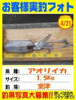 photo-okyakusama-20140421-kikugawa-aori.jpg