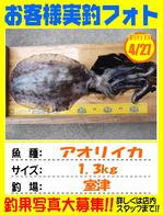 photo-okyakusama-20140427-kikugawa-aori2.jpg
