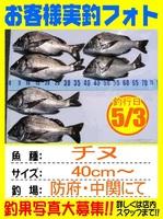 20140503-yamaguchi-tinu.jpg