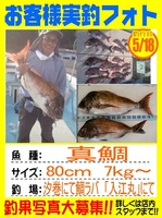 20140518-yamaguchi-madai.jpg