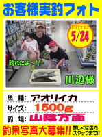 blog-choufu-20140524-kawabesama.jpg