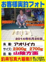 blog-choufu-20140526-yamakosi.jpg