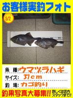 okyakusama-20140505-ooshima-umadura.jpg