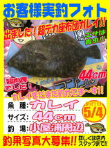 photo-okyakusama-20140504-koyaura-karei.jpg