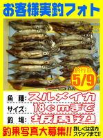 photo-okyakusama-20140510-Koyaura-ika01.jpg