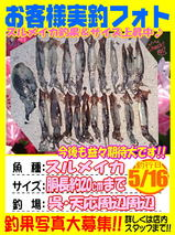photo-okyakusama-20140516-tennou-surume.jpg