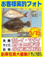 photo-okyakusama-20140517-Koyaura-karei01.jpg
