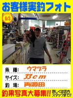 okyakusama-20140603-ooshima-umadura.jpg