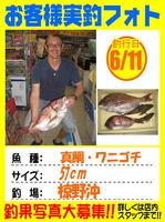 okyakusama-20140611-oosima-madai.jpg