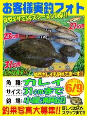 photo-okyakusama-20140609-koyaura-karei.jpg