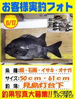 photo-okyakusama-20140617-kikugawa-tai.jpg