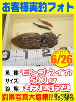 photo-okyakusama-20140627-Koyaura-ika01.jpg