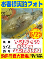 photo-okyakusama-20140627-Koyaura-ika02.jpg