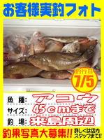 photo-okyakusama-20140706-Koyaura-akou01.jpg