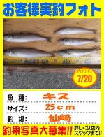 photo-okyakusama-20140720-kikugawa-kisu.jpg