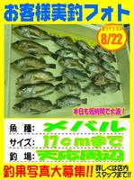 news-20140822-koyaura-01.jpg