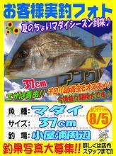 photo-okyakusama-20140805-koyaura-madai.jpg