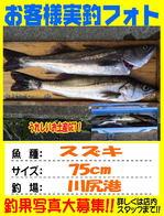 photo-okyakusama-20140817kikugawa-suzuki.jpg