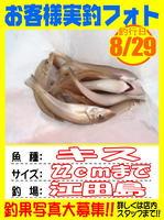 photo-okyakusama-20140829-Koyaura-Kisu01.jpg