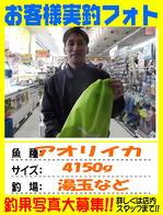 photo-okyakusama-20160802-kikugawa-dabi.jpg