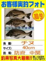 20141009-yamaguchi-tinu.jpg