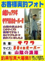 blog-choufu-20141019-kamedasama.jpg