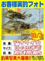 okyakusama-20140103-koyaura-ika01.jpg