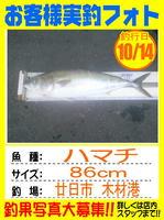 okyakusama-20141014-honten-mokuzai hamati.jpg
