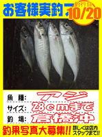 okyakusama-20141020-koyaura-aji01.jpg