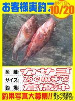 okyakusama-20141020-koyaura-kasago01.jpg