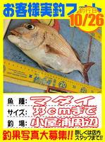okyakusama-20141026-koyaura-madai01.jpg