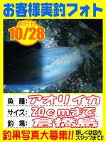 okyakusama-20141029-koyaura-ika01.jpg