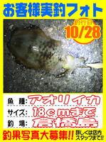 okyakusama-20141029-koyaura-ika02.jpg