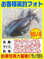 okyakusama-2014104-koyaura-ika01.jpg