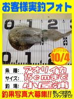 okyakusama-2014104-koyaura-ika02.jpg