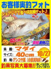 photo-okyakusama-20141027-koyaura-madai.jpg