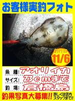 okyakusama-20141109-koyaura-ika01.jpg
