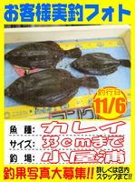 okyakusama-20141109-koyaura-ika02.jpg
