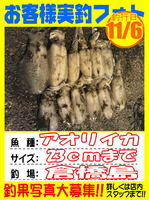 okyakusama-20141109-koyaura-karei01.jpg