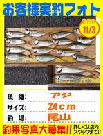photo-okyakusama-201411031kikugawa-aji1.jpg