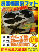 photo-okyakusama-20141116-tennou-karei1.jpg