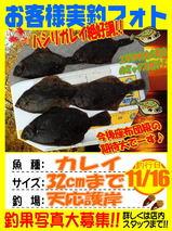 photo-okyakusama-20141116-tennou-karei2.jpg