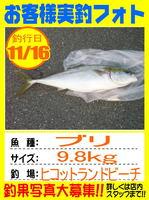 photo-okyakusama-20141117-hikoshima-buri.jpg