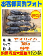 photo-okyakusama-20161026-kikugawa-aori.jpg