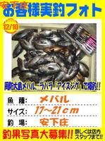 blog-20141210-ooshima-01.jpg